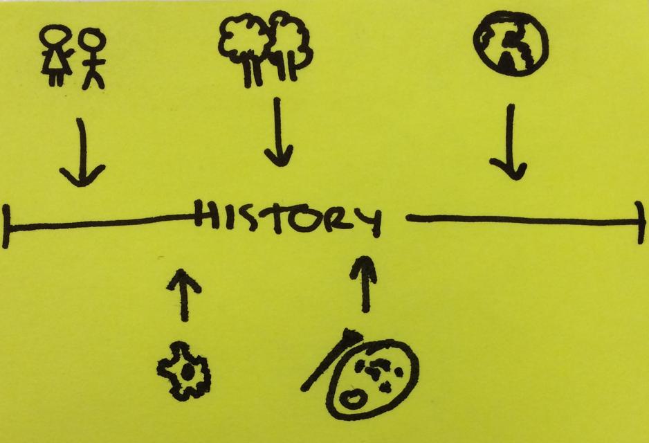 sa_strategy
